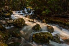 平安的河 库存照片