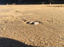 平安的海滩 库存照片