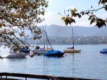 平安的湖边视图 免版税库存照片