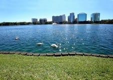 平安的湖Eola公园在街市奥兰多,佛罗里达 库存图片