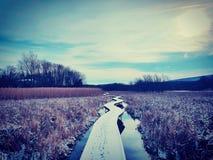 平安的蜿蜒的木板走道 库存图片