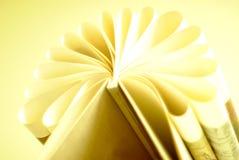 平安的静物画-与叶子的一本书折叠了入花的形状 免版税库存照片