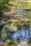 平安的鳟鱼小河 库存照片