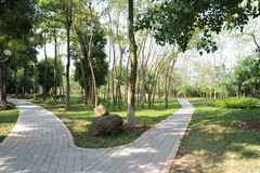 平安的绿色道路在公园 免版税库存照片