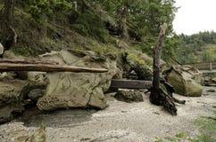 平安的Montague港口海洋省公园, Galiano海岛加拿大 免版税库存图片