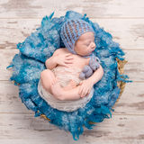 平安睡觉新出生在与蓝色毯子的篮子 库存图片