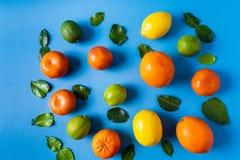 平展放置未加工的新鲜的柑桔-桔子、柠檬、石灰和蜜桔与石灰叶子 免版税库存照片