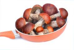 平底锅充满蘑菇为烹调意欲。拍摄 免版税库存照片