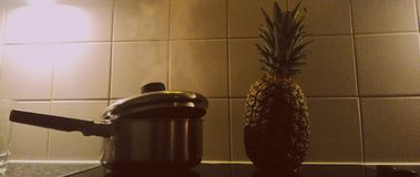 平底锅和菠萝静物画  免版税库存图片