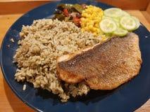 平底锅油煎的Dorado用菠菜米和菜 图库摄影