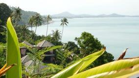 平房和棕榈在海滨 位于风平浪静海岸和绿色棕榈的屋顶村庄热带手段的 影视素材