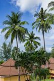 平房在一个热带庭院里 免版税图库摄影