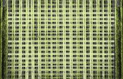 水平抽象装饰格子纹理的背景,栅格复杂地雕刻了窗口,横渡排行黄色oirange紫罗兰色r 免版税库存照片