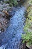 平旋桥在田纳西的秋天小河秋天国家公园横渡大派尼瀑布 库存图片
