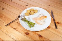 平淡健康有机鸡晚餐 乏味低卡路里食物fo 免版税库存照片