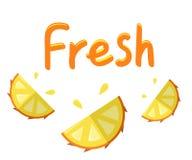 平的传染媒介橙色鲜美新鲜的菠萝海报 向量例证