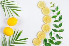 平的位置柠檬果子 免版税库存图片