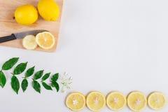 平的位置柠檬果子 库存图片