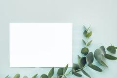 平的位置玉树分支和在蓝色背景,顶视图的空白的白色板料 嘲笑 免版税库存图片