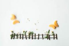 平的位置设定由蜜桔和绿草制成在白色背景 库存照片