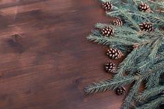 平的位置:落叶松属和冷杉分支和杉木锥体在木书桌上 免版税库存图片