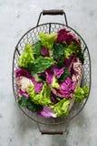 平的位置 北京,皱叶甘蓝和莴苣叶子在灰色背景 季节性菜 沙拉叶子 免版税库存照片