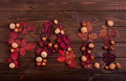 平的位置从秋天红色叶子,榛子和wal的词秋天 库存图片