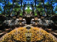 水平的充满活力的生动的石头精神平衡 免版税库存照片