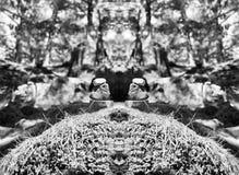 水平的充满活力的生动的黑白石头精神平衡 库存照片