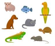 平的动画片设置与各种各样的宠物 库存照片