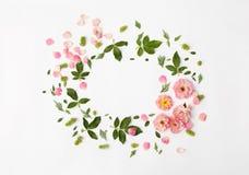 平的在白色背景,顶视图的自然花卉圆的框架 免版税库存照片