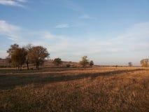 平的地形壮观的风景  原野的秀丽 不尽的草甸 在新鲜空气的步行 清洗在蓝色的自然 库存图片