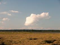 平的地面和一条小河乡下场面,与大白色 图库摄影