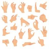 平的手势 指向人的手指姿态,开放手势 胳膊通信注意标志传染媒介汇集 皇族释放例证
