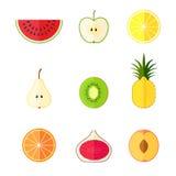 平的果子 也corel凹道例证向量 免版税库存图片