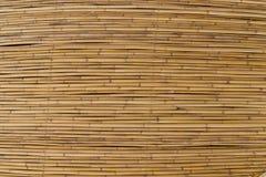 水平的棕色竹纹理 图库摄影