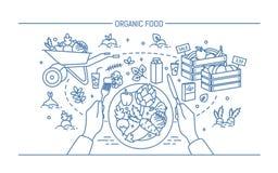 水平的横幅用有机食品 与菜在板材,不同的新鲜的产品,绿叶,果子的构成 免版税库存图片