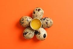 平的被放置的构成用在颜色背景的鹌鹑蛋 免版税库存照片