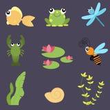 平的被设置的设计逗人喜爱的动物 河生活:鱼,青蛙,蜻蜓,小龙虾,蜂,荷花,壳 库存图片