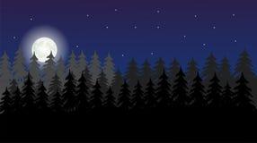 平的风景设计在晚上 免版税库存照片