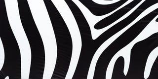 水平的黑白斑马纹理背景 免版税库存图片
