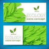 平的eco叶子横幅概念 也corel凹道例证向量 免版税库存图片