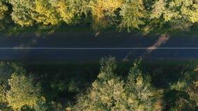 平直的高速公路的空中射击在喀尔巴阡山脉在夏天 影视素材