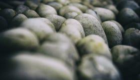 平稳的岩石 免版税库存照片