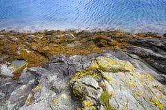 水平线和岩石海岸关闭 库存图片