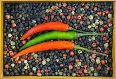 平行的在圆点的背景混合的辣椒绿色红色荚染黑与木制框架容器的红色白色 免版税库存图片