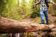 平衡在一棵下落的树的男孩横渡一条小河在森林里 免版税库存图片
