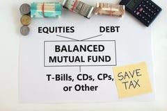 平衡的基金印度投资选择概念 免版税库存图片