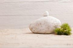 平衡的岩石和绿叶 免版税库存图片