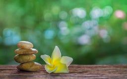 平衡禅宗石头和黄色羽毛在木头与绿色bokeh 库存照片